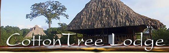 The Cotton Tree Lodge
